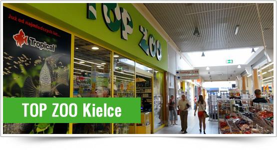 Top Zoo - Kielce